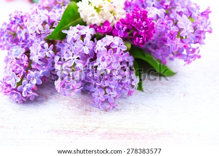 Lilac Spring flowers border over white wooden background. Bunch of violet and purple lilac flower with green leaves close up - stock photo