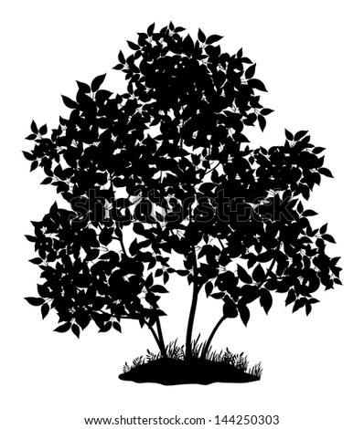 Lilac tree with leaves and grass, black silhouette on white background. - stock photo