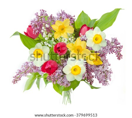 Lilac, tulips and narcissus flowers bunch isolated on white background - stock photo