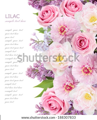 Lilac,tulips and roses flowers background isolated on white with sample text  - stock photo
