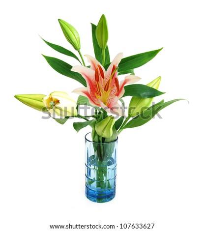 Lily flower vase isolated white - stock photo