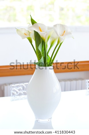 Lily of the Nile (Zantedeschia aethiopica) flowers in a white vase. Photography very bright. - stock photo