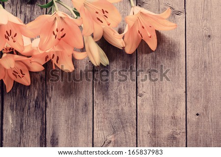 lily on wooden background  - stock photo