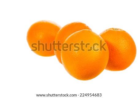 Lime and lemon Slice isolated on white background - stock photo