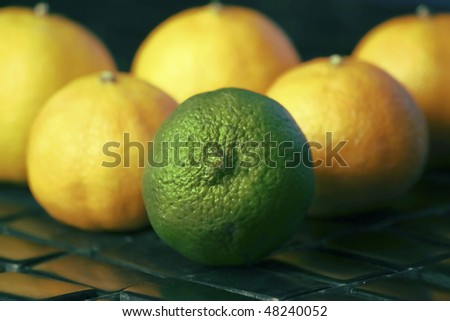 Lime in Group of Lemons - stock photo