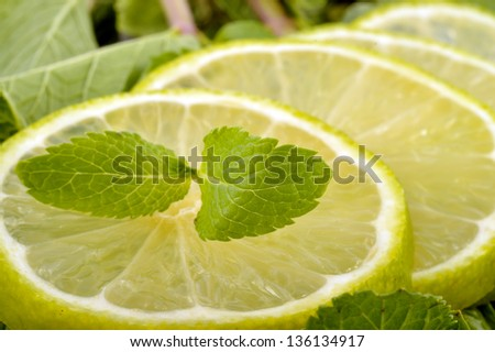 Lime slices and mint leaves on a white background - stock photo