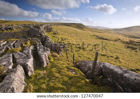 Limestone rocks and flint walls lead towards Malham Moor in distance in Yorkshire Dales National Park - stock photo