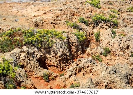 Limestone rocks on the coast of Aegean Sea in Malia, Crete, Greece. - stock photo