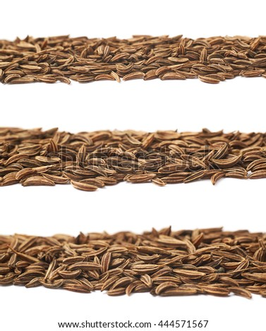 Line of cumin seeds isolated over the white background, set of three different foreshortenings - stock photo