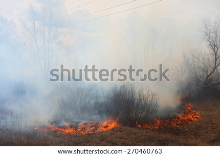 Line of the fire coming toward the village - burning meadow grass - stock photo