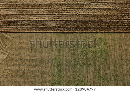 Lines in a field - stock photo
