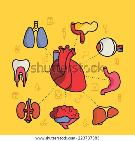 lines style human organs set icons concept background with ribbon. illustration design - stock photo