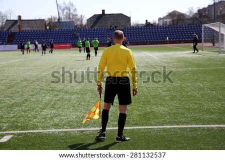 Linesman with flag  on the football field at sunny day  - stock photo