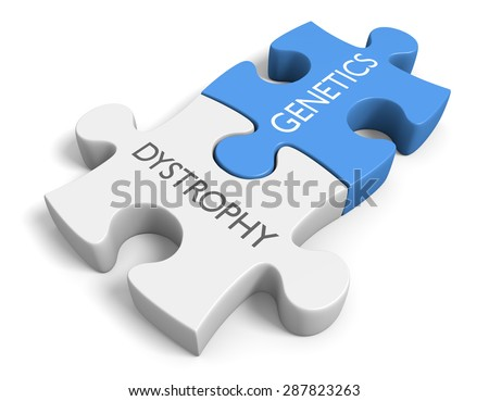 Link between genetics and various dystrophy disorders - stock photo
