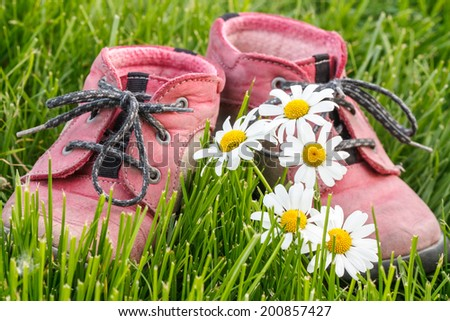 little baby booties in the grass with daisies - stock photo