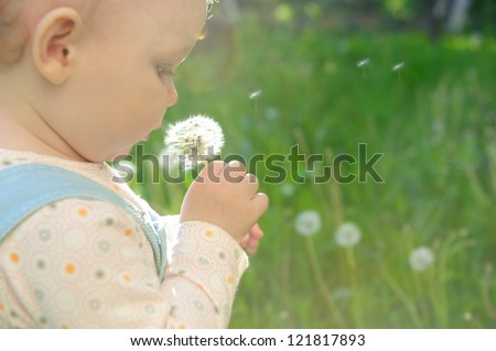 Little baby girl blowing on dandelion. Sunlight effect - stock photo