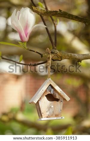 Little Birdhouse in Spring magnolia flower tree - stock photo