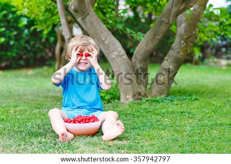 Little blond kid boy having fun with picking and eating cherries in domestic garden on warm summer day, outdoors. Healthy snack for children in summer. Kids helping with gardening - stock photo