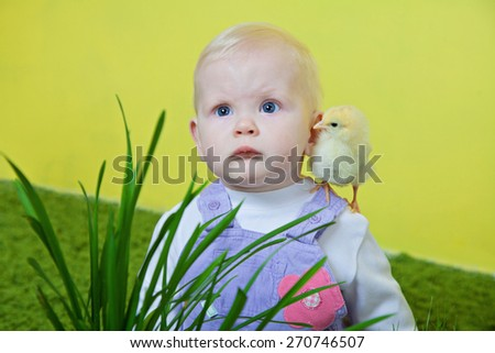 little blonde girl with yellow chicken on her shoulder  - stock photo