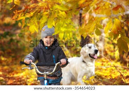 Little boy biking with a golden retriever in autumn park - stock photo