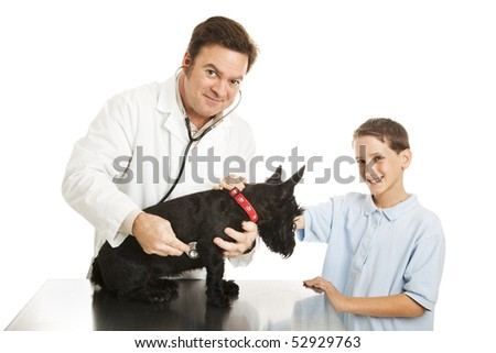 Little boy brings his dog to the vet for a checkup.  Isolated on white. - stock photo