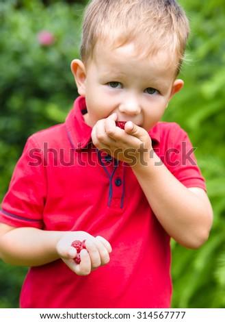 Little boy eating raspberry outdoors - stock photo