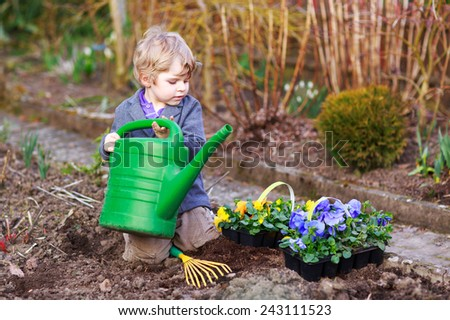 Little boy gardening and planting vegetable plants and flowers in garden, outdoors - stock photo