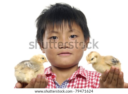 Little boy holding young easter chick. - stock photo