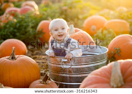 Little boy in a pumpkin patch - stock photo