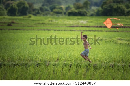 Little boy in blue shirt running with kite in the field on summer day in the rice fields. - stock photo