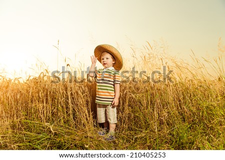 little boy in hat standing at wheat field sunset - stock photo