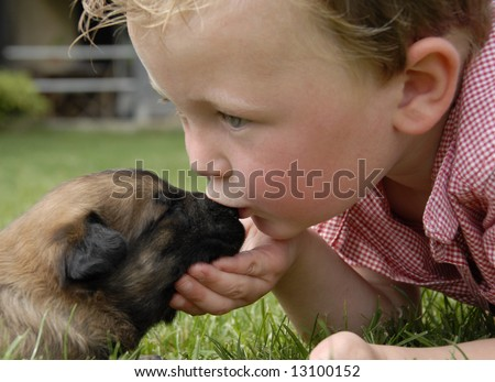 little boy kissing his very young puppy purebred belgian shepherd malinois - stock photo
