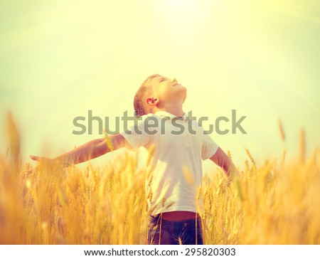 Little boy on a wheat field in the sunlight enjoying nature. Kid Raising hands over sunset sky background. Fresh air, environment concept - stock photo
