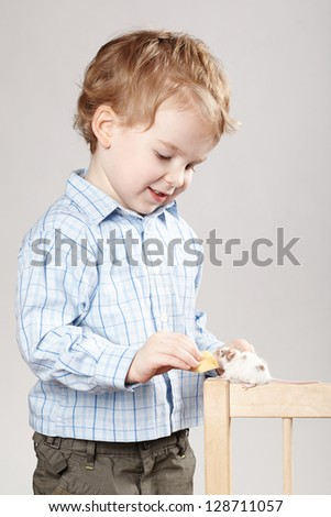 little boy plays with mouse - stock photo
