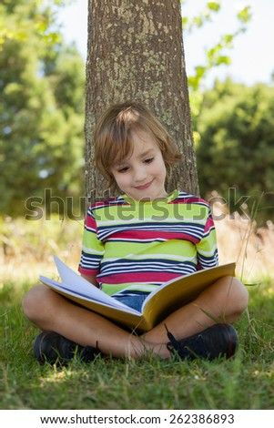 Little boy reading in the park on a sunny day - stock photo