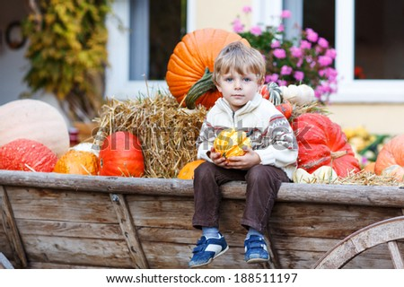 Little boy sitting on big tractor full with pumpkins on pumpkin patch on farm - stock photo
