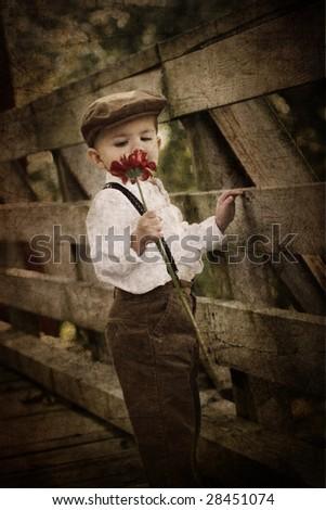 little boy smelling flower - stock photo