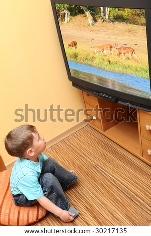 """Little boy watching cinema on TV. TV screen -  photo of the author """"Deers"""" - stock photo"""