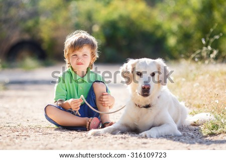 Little boy with a golden retriever dogs outdoor. Boy with a dog on the nature - stock photo