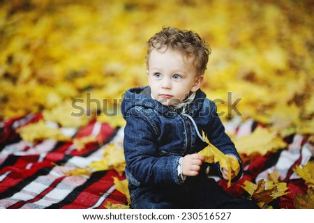little boy with curly hair and blue eyes sitting in jeans overalls plaid on a background of autumn leaves. A boy in his hand holding a yellow leaf - stock photo