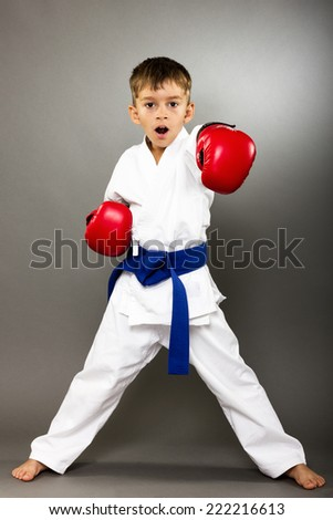 Little boy with red gloves training karate isolated on gray background - stock photo