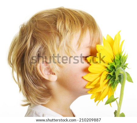 Little boy with sunflower isolated on white background - stock photo
