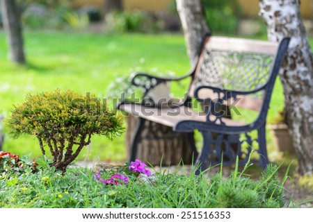Little Bush and a bench in the garden in the summer - stock photo