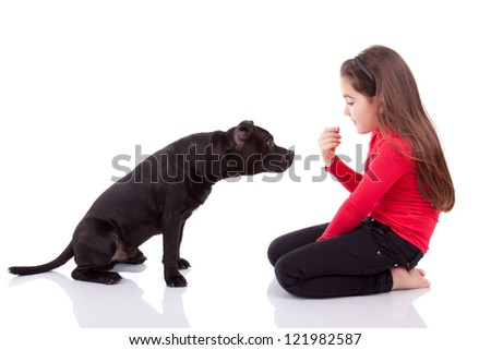 Little caucasian girl playing with her pet, isolated on white background - stock photo