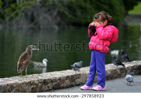 Little child (girl age 05) holds a camera and photographing birds outdoor in the park. - stock photo