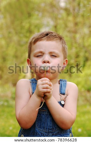 Little Country Boy Blows on Dandelion to make a Wish - stock photo