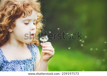 little curly girl blowing dandelion - stock photo