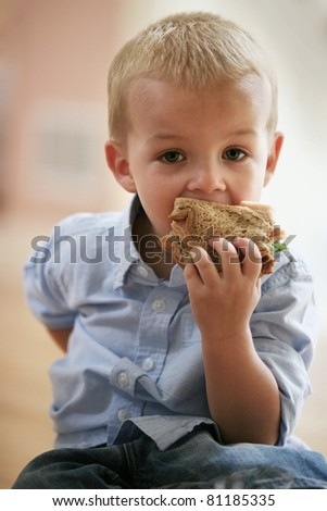 Little cute boy eating healthy sandwich. - stock photo