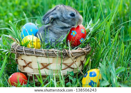 little easter bunny sitting in the grass, scattered around the decorated eggs - stock photo