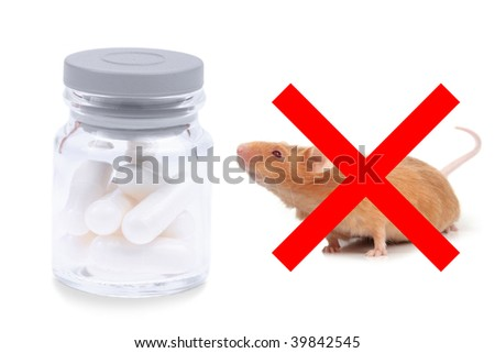 little fancy mouse sniffing bottle of pills - stock photo